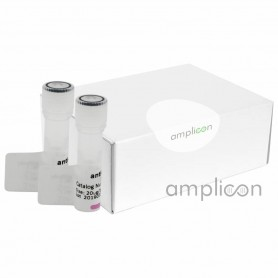 Immunoprecipitation (IP) Kit